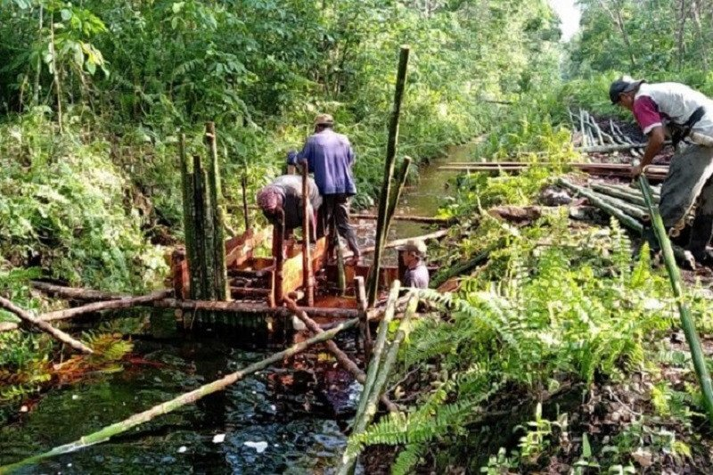 BRGM bangun 63 IPG sekat kanal di lima KHG Provinsi Jambi