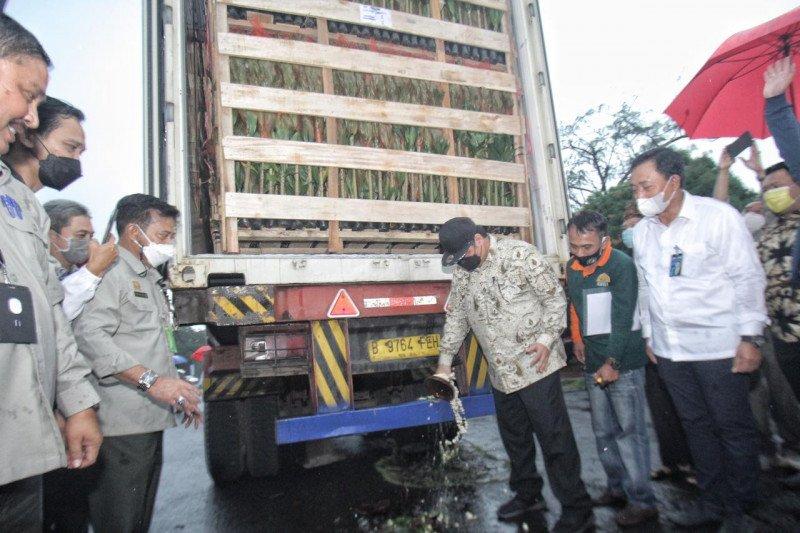 BNI berikan KUR untuk dukung UKM pengekspor tanaman hias