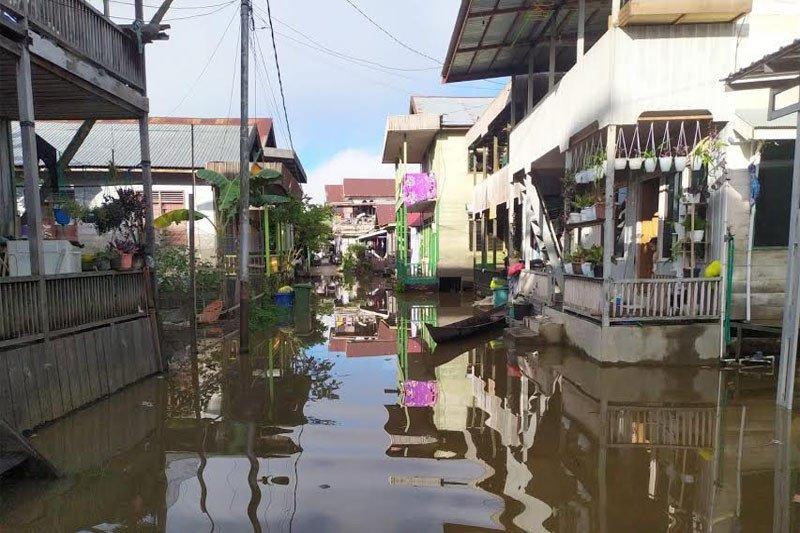 Jalan dan pemukiman di Barito Utara terendam banjir