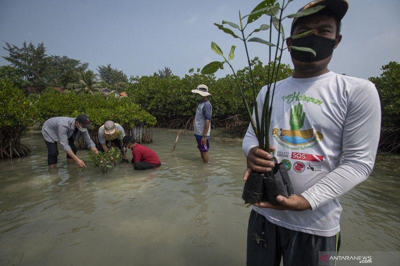 Peringatan Hari Keanekaragaman Hayati Sedunia di Pulau Harapan