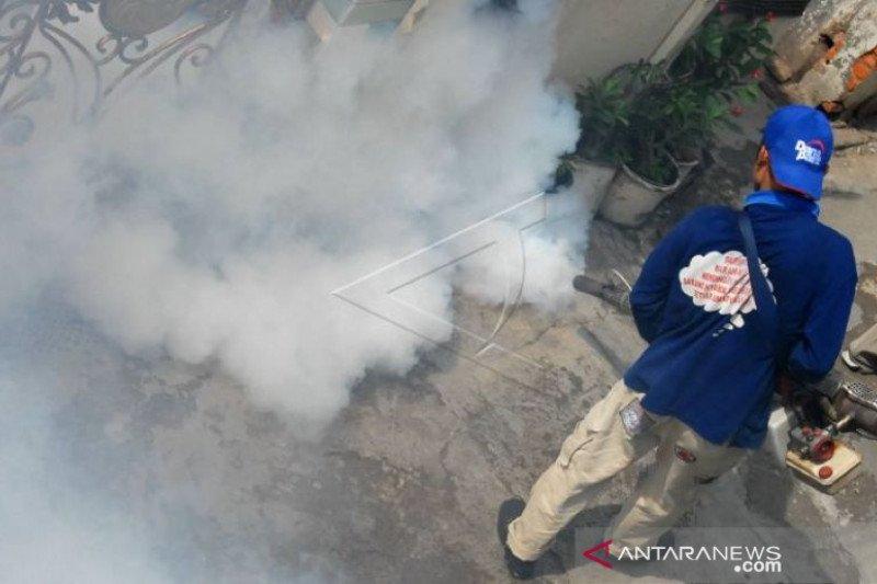 Saat pandemi COVID-19,  DBD di Pekanbaru-Riau capai 112 kasus