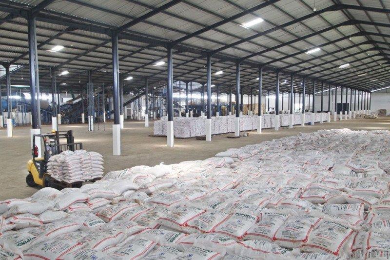 Produsen pupuk SAMF bayarkan dividen tunai akhir Juni