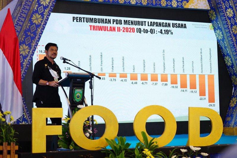 Mentan harap Food Estate di daerah bisa pasok pangan seluruh Indonesia