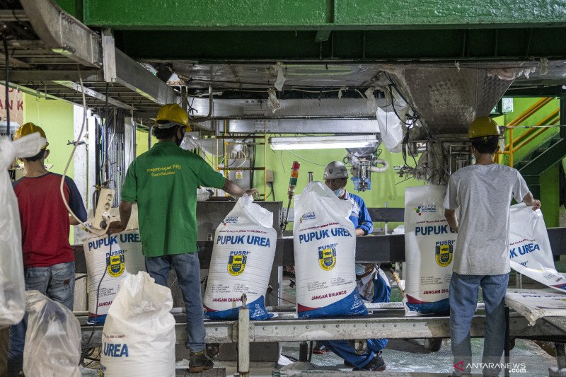 3,2 juta ton pupuk bersubsidi telah tersalurkan pada petani