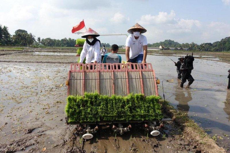 Pupuk Indonesia terus perluas Program Agro Solution
