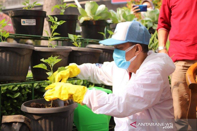Jakarta Selatan juga tanam sayuran dan tebar 11 ribu benih ikan