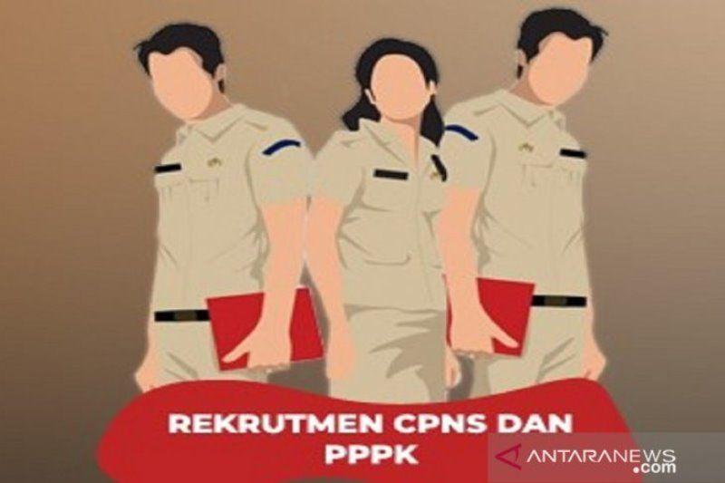 Kemenpan RB jelaskan pedoman pengadaan CPNS dan PPPK