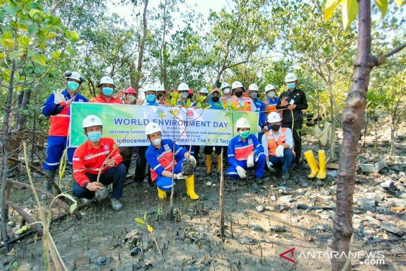 Indocement tanam 100 pohon di area mata air Cikukulu Bogor