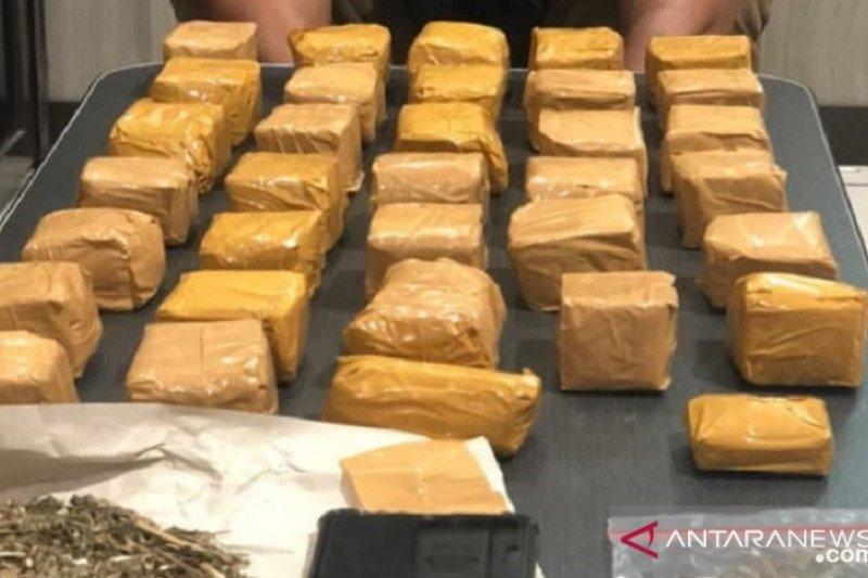 Polres Sukabumi menangkap bandar narkoba pemilik 1,2 kg ganja