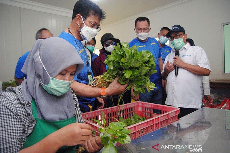 Menteri Pertanian: Realisasi produksi pangan meningkat