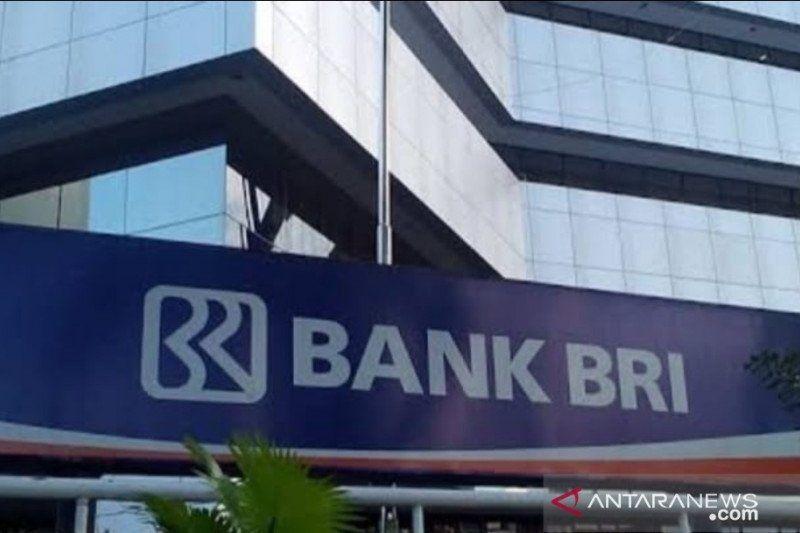 BRI Insurance gandeng agen BRILink se-Indonesia lindungi UMKM