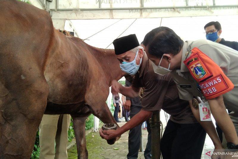 Pemkot Jaksel edukasi kusir delman cara pasang tapal kuda