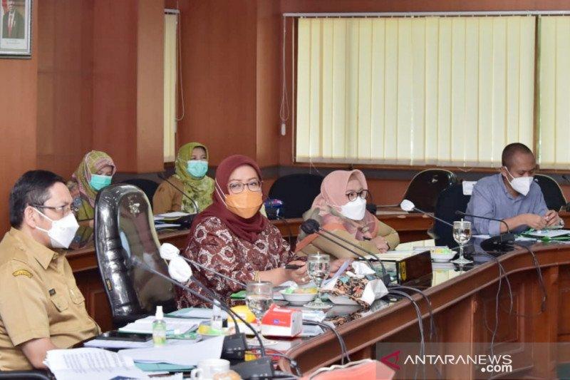 Ekspor tanaman hias Bogor datangkan devisa hingga Rp700 juta per hari