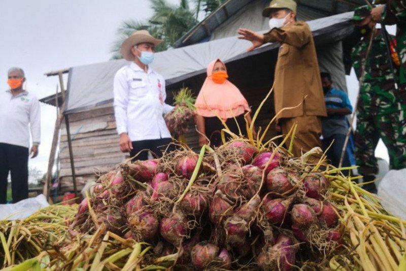 Pemprov Kalsel siap ciptakan wirausaha muda sektor pertanian