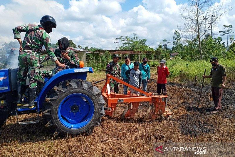 Kementan akan tambah food estate berbasis hortikultura