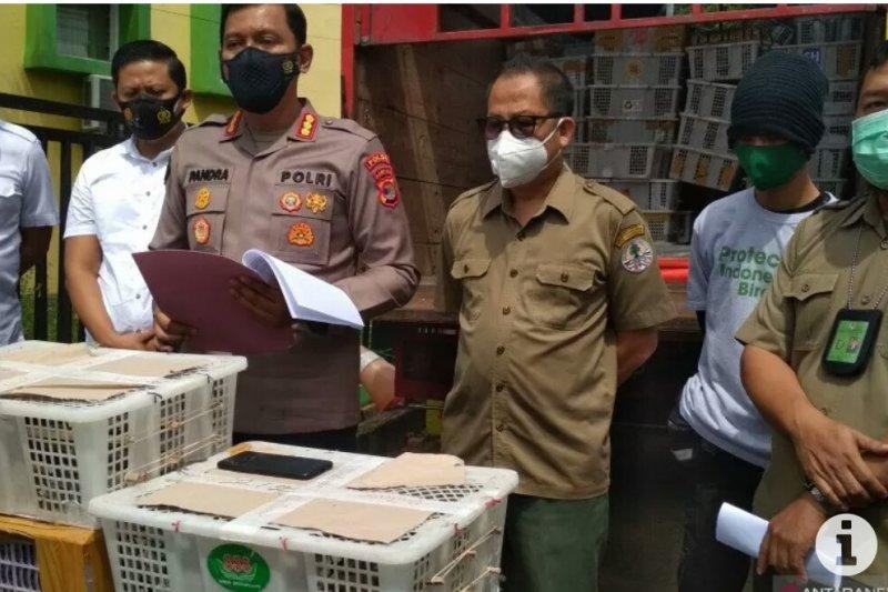 Tim gabungan gagalkan penyelundupan ribuan burung di Lampung