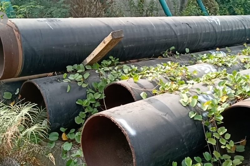 Proses eksekusi hibah besi Freeport Indonesia milik warga 5 Daskam Papua