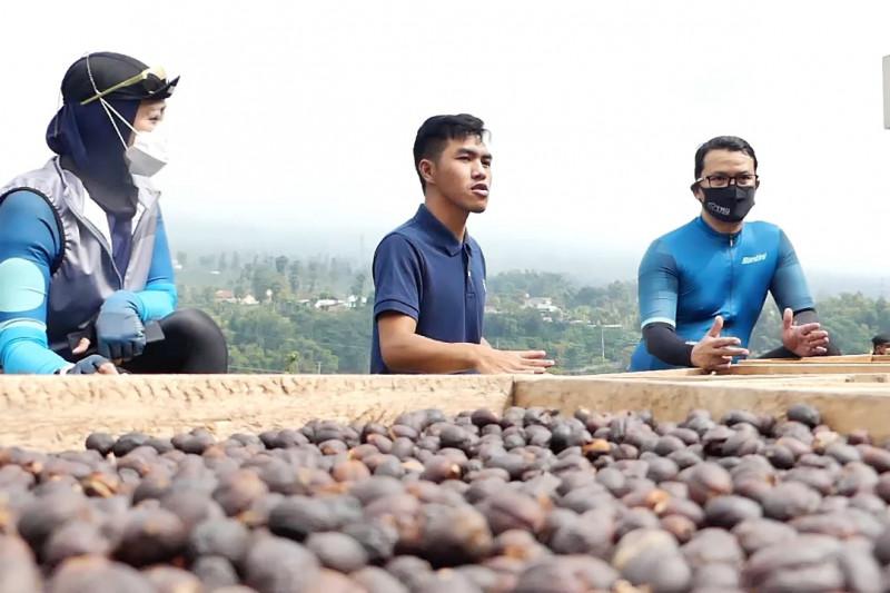 Pemerintah dorong lahirnya pelaku kopi milenial Temanggung