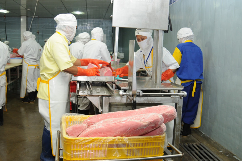 KKP gelar pelatihan jaga kualitas ikan tuna untuk ekspor