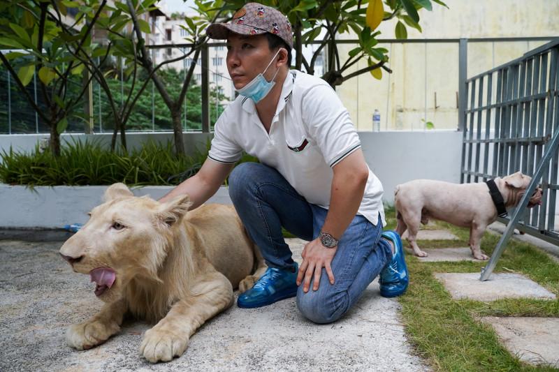 Singa TikTok di Kamboja dikembalikan ke pemiliknya