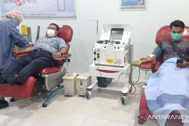 PMI Jember produksi plasma konvalesen saat permintaan meningkat