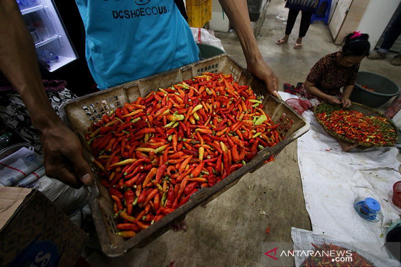 Pekan pertama September, harga cabai rawit merah turun 8,3 persen