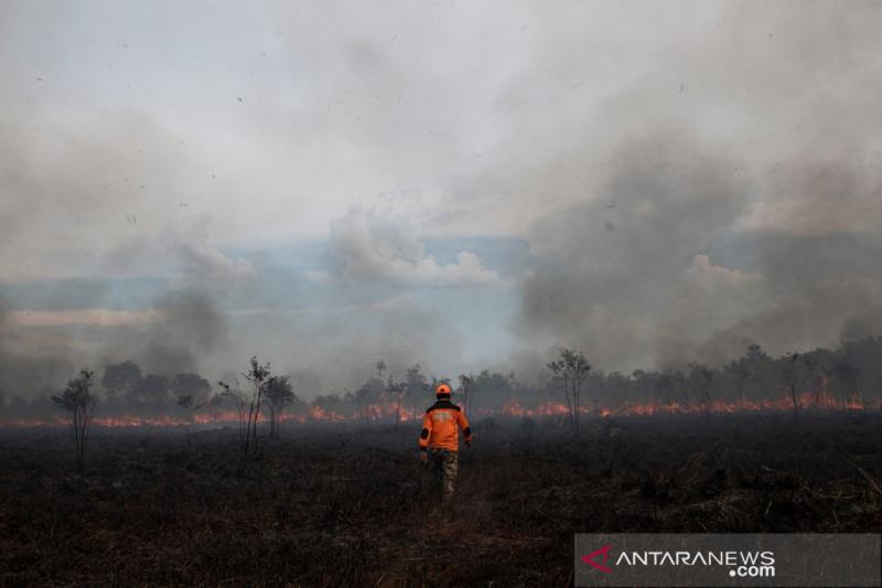 Belasan hektare lahan di Ogan Ilir terbakar
