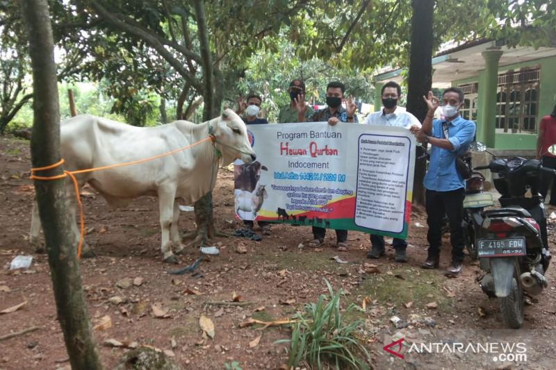 Idul Adha 1442 H, Indocement tebar ratusan hewan kurban di desa mitra