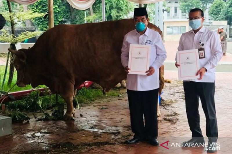 Presiden serahkan hewan kurban di Masjid Istiqlal