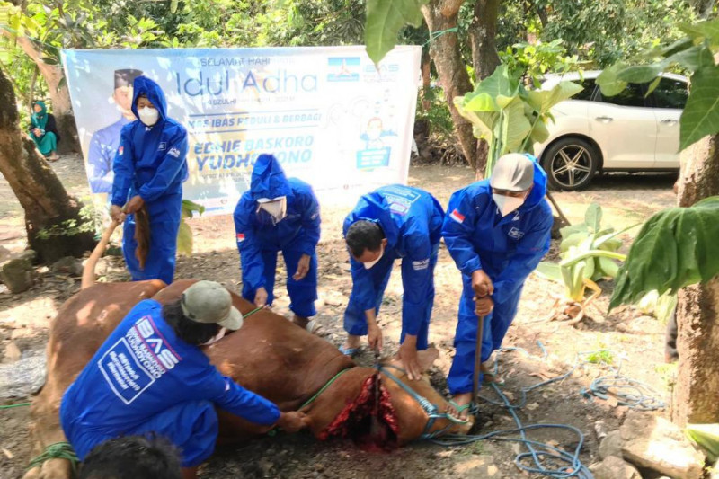 Ibas serahkan 102 hewan kurban pada Idul Adha 1442 H