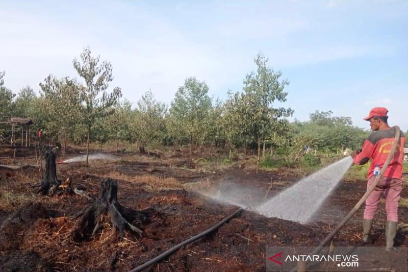 Tim gabungan padamkan karhutla di hutan lindung Giam Siak Kecil