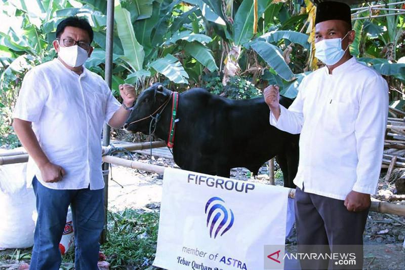 FIFGroup bagikan hewan kurban 371 kambing dan 3 sapi