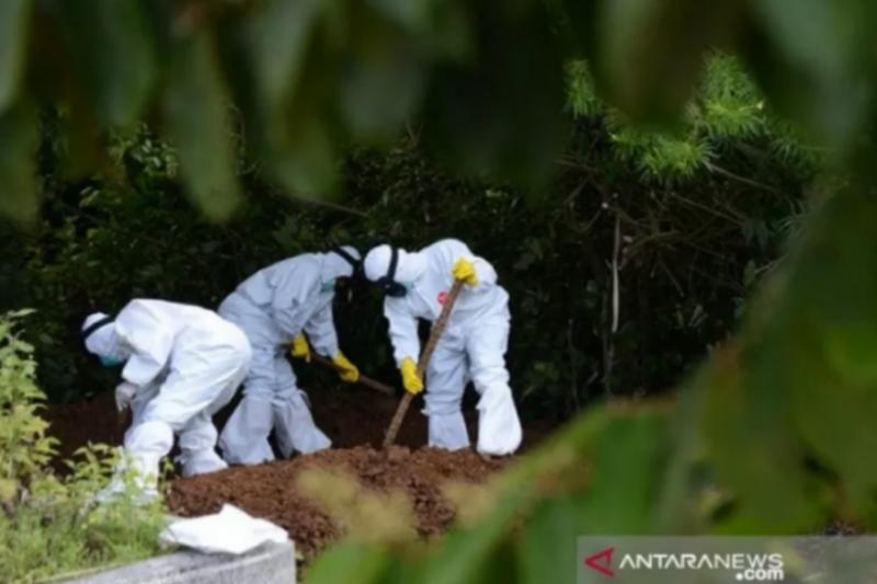 Kasus meninggal akibat COVID-19 di Sultra bertambah 9 jadi 303 orang