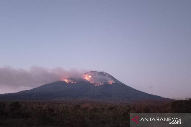 Terjadi kebakaran hutan akibat erupsi Gunung Ili Lewotolok di Lembata