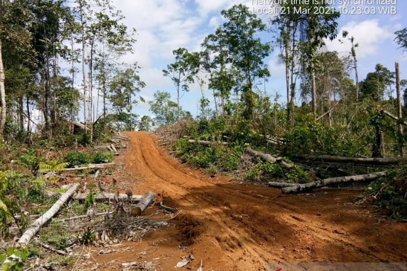 KPHP Mukomuko menghentikan pendataan pelaku perambahan hutan