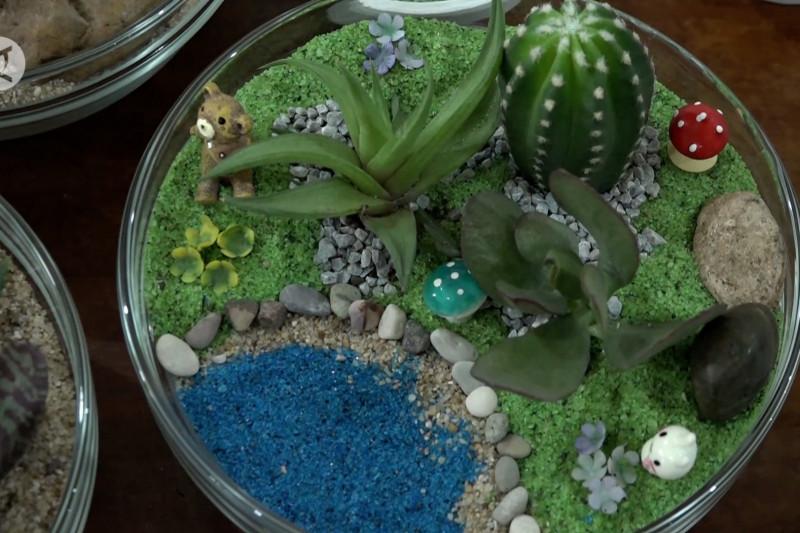Geliatkan ekonomi mikro dengan membuat terrarium