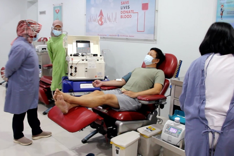 Permintaan plasma konvalesen di Jember terus meningkat