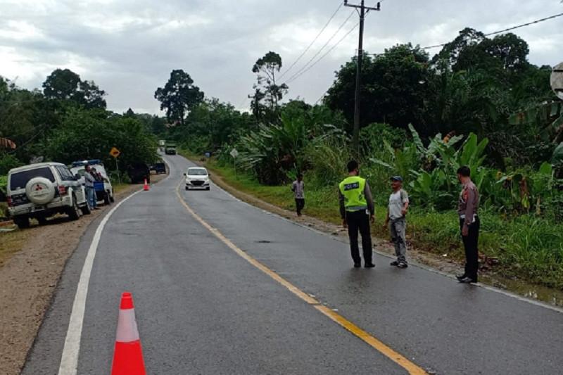 Pengendara Supra-X tewas tabrak truk sawit di jalan lintas Sumatera
