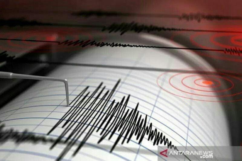 Gempa magnitudo 4,5 landa Papua