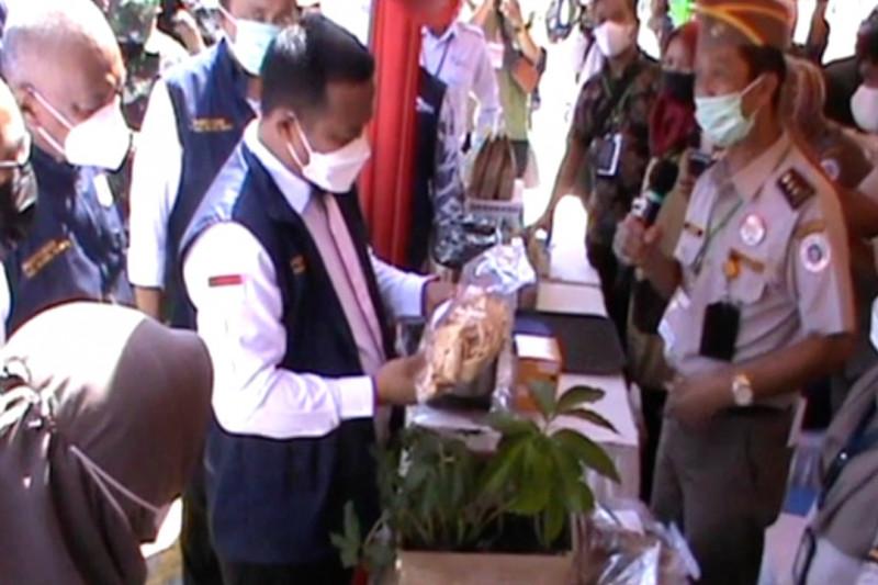 Komoditas pertanian jadi primadona ekspor Sulsel