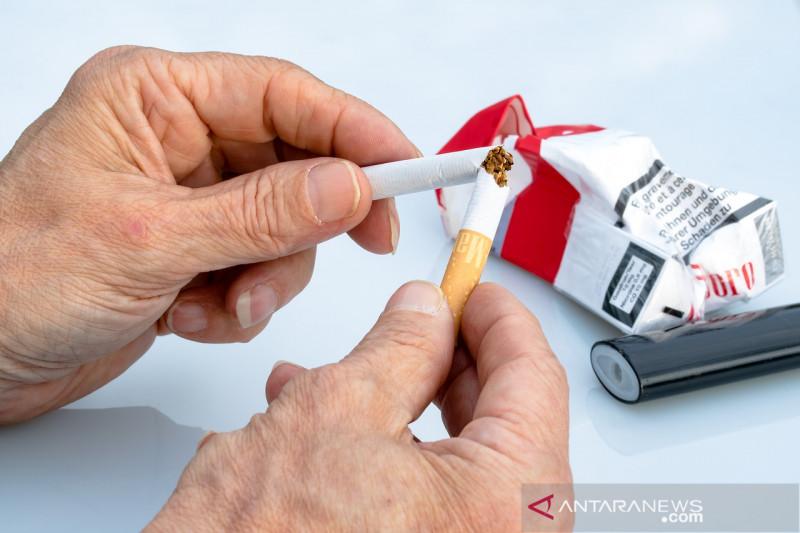 non smoker 2367409 1280