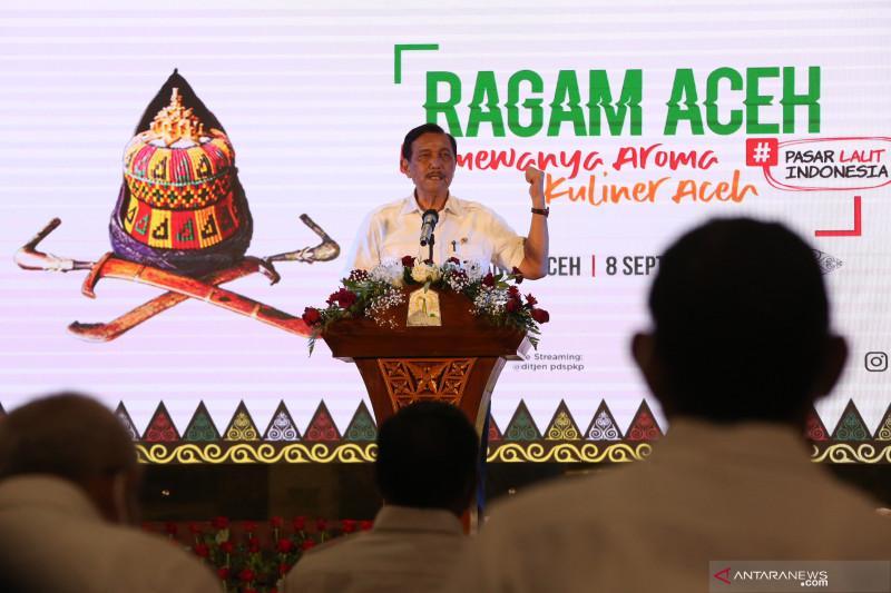 Luhut minta pasien COVID di Aceh tak dibiarkan isolasi mandiri