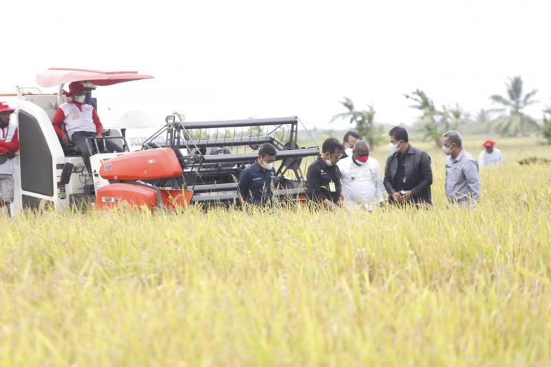 Akademisi: Indonesia harus jaga surplus perdagangan sektor pertanian