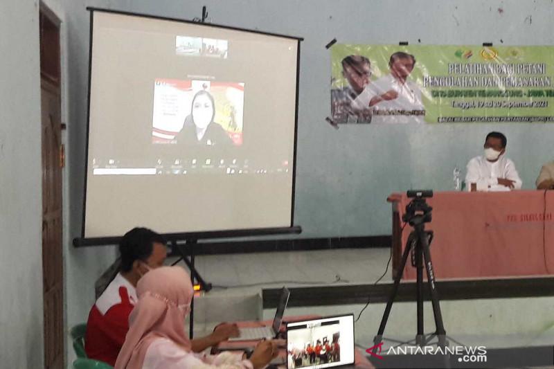 Petani Temanggung ikuti pelatihan pengolahan dan pemasaran cabai