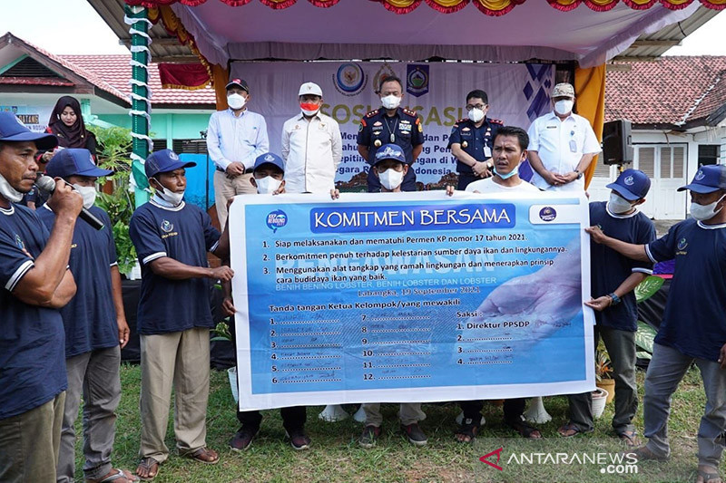 KKP apresiasi ikrar nelayan NTB patuhi aturan terkait lobster