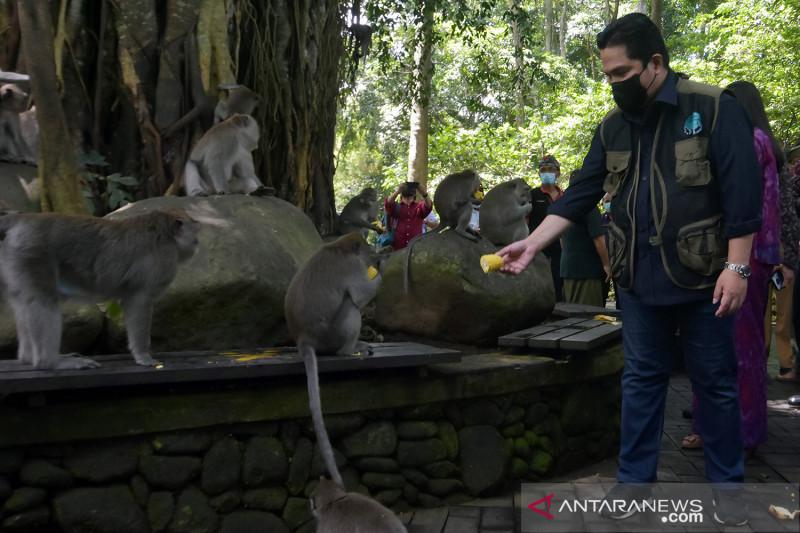 Menteri BUMN kunjungi Monkey Forest Bali