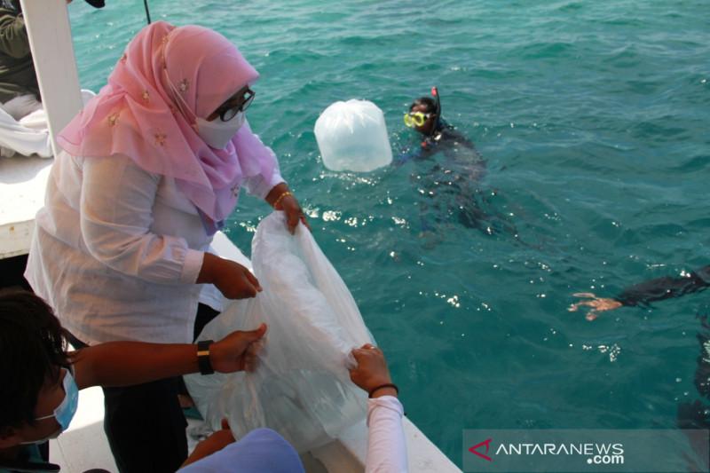 Sudin KPKP Kepulauan Seribu tabur benih ikan di area perlindungan laut