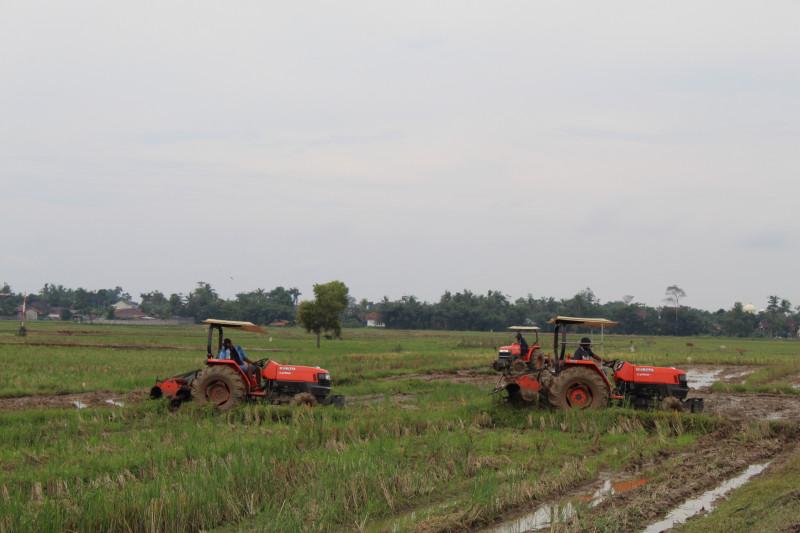 Ombudsman nilai peran pemerintah penting dorong kesejahteraan petani