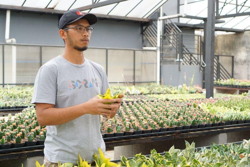 Kementan: Regenerasi petani muda mulai terlihat