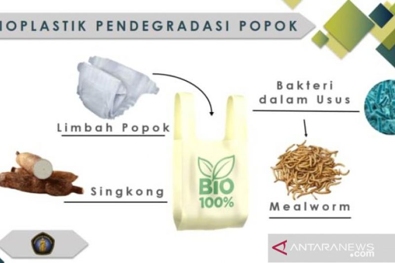 Bioplastik singkong solusi atasi limbah popok bayi karya mahasiswa UB